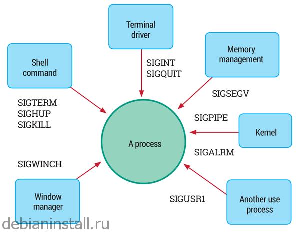 Механизм сигналов Linux